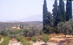 Roman site west of Perdhikaria (LOCA 9070)