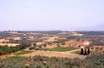 """Plowed Field"" Roman villa site (LOCA 9221)"