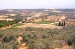 """""""Plowed Field"""" Late Roman villa site (LOCA 9221)"""